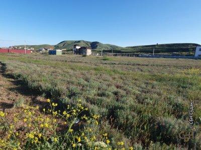 Продаются земельные участки в Солнечной Долине
